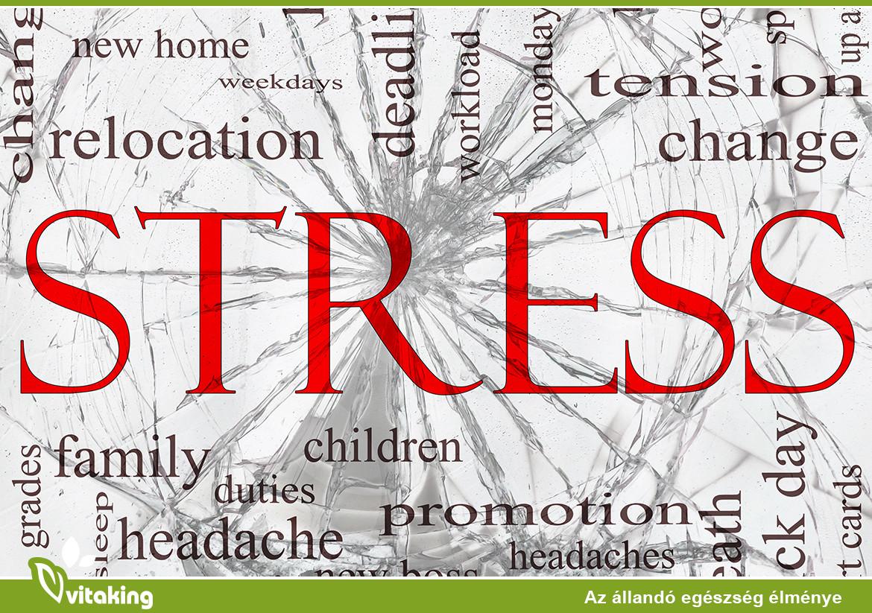 Elkészült Magyarország stressztérképe