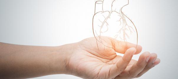C-vitamin: rendszeres fogyasztása biztosíthatja a szív védelmét
