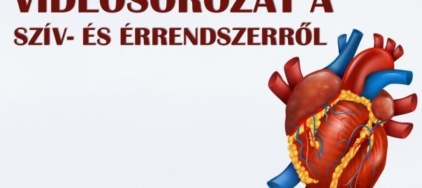 Szív- és érrendszer: Videósorozat arról, amit a témáról tudni érdemes!