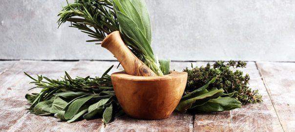 Gyógynövények és fűszerek fantasztikus egészségügyi előnyökkel